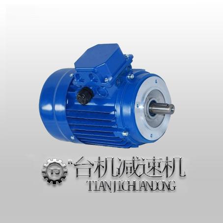 三相立式异步电机(单相立式异步电机)